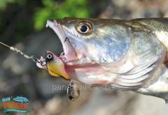 Predator-Z Lead Fish, 14g, A03 CZ4023