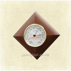 Moller 201001 barometer