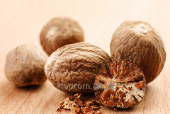 Nutmeg whole (ABCD)
