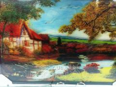 Picture of volume 40*60 cm 111128