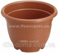 D145*H105,1002 103530 flower p