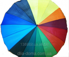 The umbrella cane female the Rainbow the Giant,