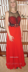 Evening dress in a floor with an embroidery from