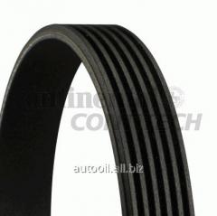 Belt poliklinovy Contitech