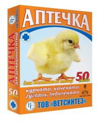 Vetaptechka with paramitsiny