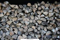 Firewood dry BEECH
