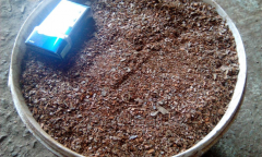 Pine bark (mulch)
