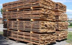 Board not cut pine price Ukraine