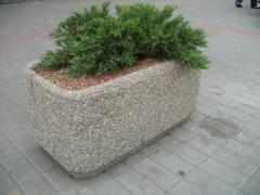 Flowerpot Frigate