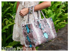 Bag from leather of a python