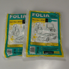 FOLIA - BLUE-CAR the Cape painting 4*5