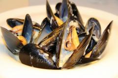 Spanish mussel, 1 kg