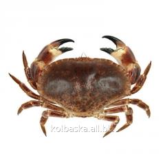 Crab Turto Korolevsky (600/800), 1 kg
