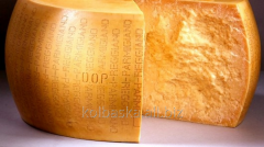 Cheese Italian Parmigiano Reggiano of 18 months