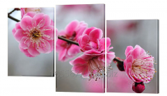 Picture modular the 4th cherry flowers
