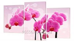 Картина модульная 175 Цветы