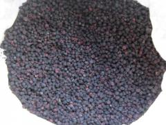 Aroniya berries (black-fruited mountain ash)