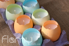 Floating candles, in an egg shell, 10 pieces