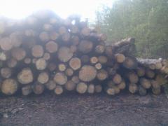 Лесоматериал (лес кругляк: пиловочник, технология,