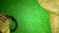 Droblyonka of a beer box green