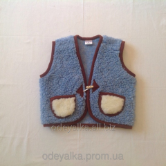 The vest children's warmed on 2-4 year