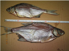 Bream Article, dried without luska: 022