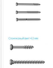 Screws are kortikalny, the screws blocked, microscrews. Kiev