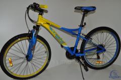 Велосипед 26 G26A315 2500002310827