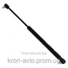 Emphasis of door of luggage carrier of LADA 2104,