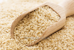 Sesame oil, water-soluble