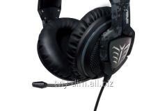 Asus EchElon/Forest/Alw/As earphones