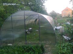 Farmer greenhouse