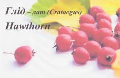Frozen hawthorn