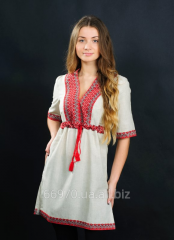 The embroidered tunic female