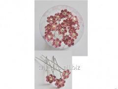 Hairpin for volossya an art. Sh2603/20 20 pieces