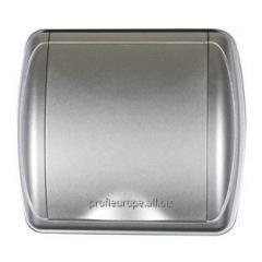 4760 Pnevmorozetki of the DUE silver series