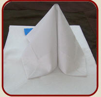 Cloths and napkins for hotels, restaurants, the