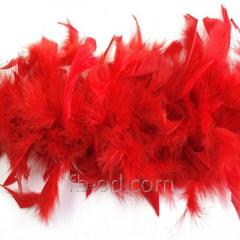 Boa down feather of D 10 Red 23342