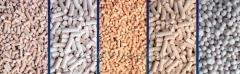 Molecular sieve, zeolites
