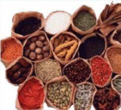 Spices and spicery wholesale