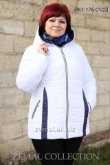 Куртка PK1-176