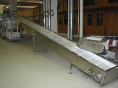 Conveyor Belt inclined