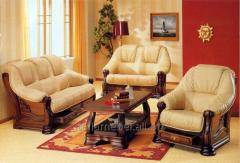 Кожаная Мягкая Мебель Для Гостиной