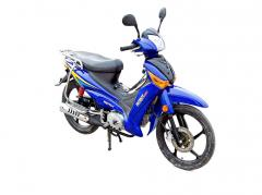 Active Cub moped (PM110-1)