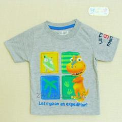 T-shirt for the boy 22106