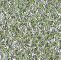 Трава для гольфа Eagle