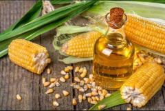 Having poured syrodavlenny corn oil