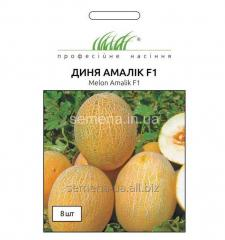 Melon seeds Amalik of F1, Article of 1306