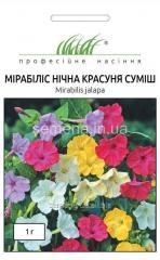 Flowers seeds, Odnoletnik Mirabilis Night beauty,