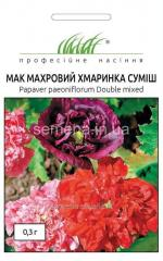 Flowers seeds, Odnolietnik Mack terry Cloud mix,